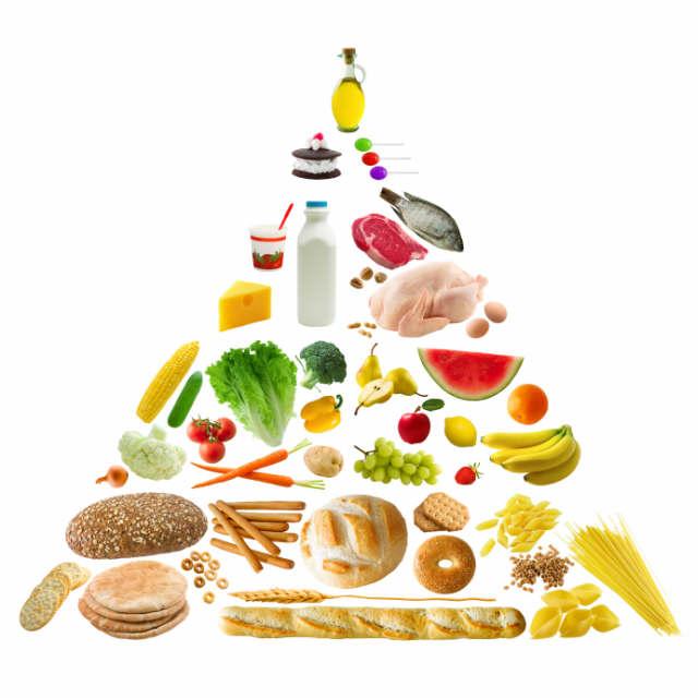 Makanan Bergizi Tidak Harus Mahal