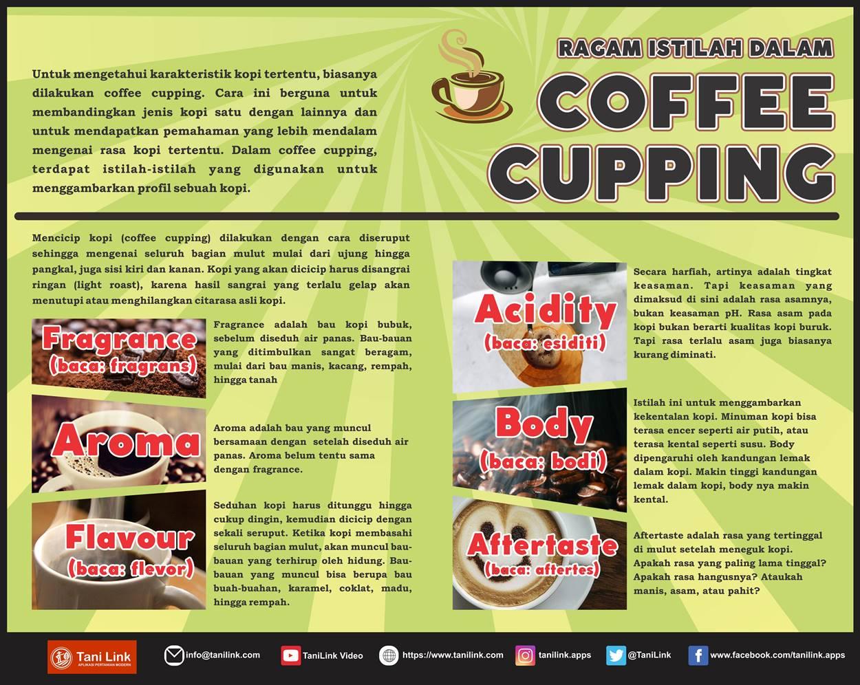 INFOGRAFIS : Ragam Istilah Dalam Coffee Cupping