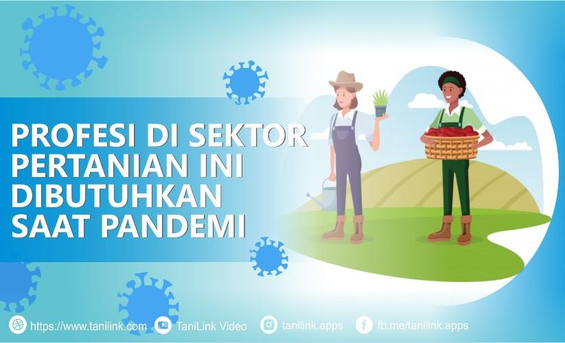 4 Profesi di Sektor Pertanian yang Dibutuhkan Saat Pandemi