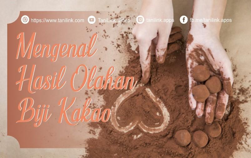 Mengenal Hasil Olahan Biji Kakao