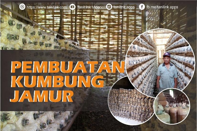Pembuatan Kumbung Jamur