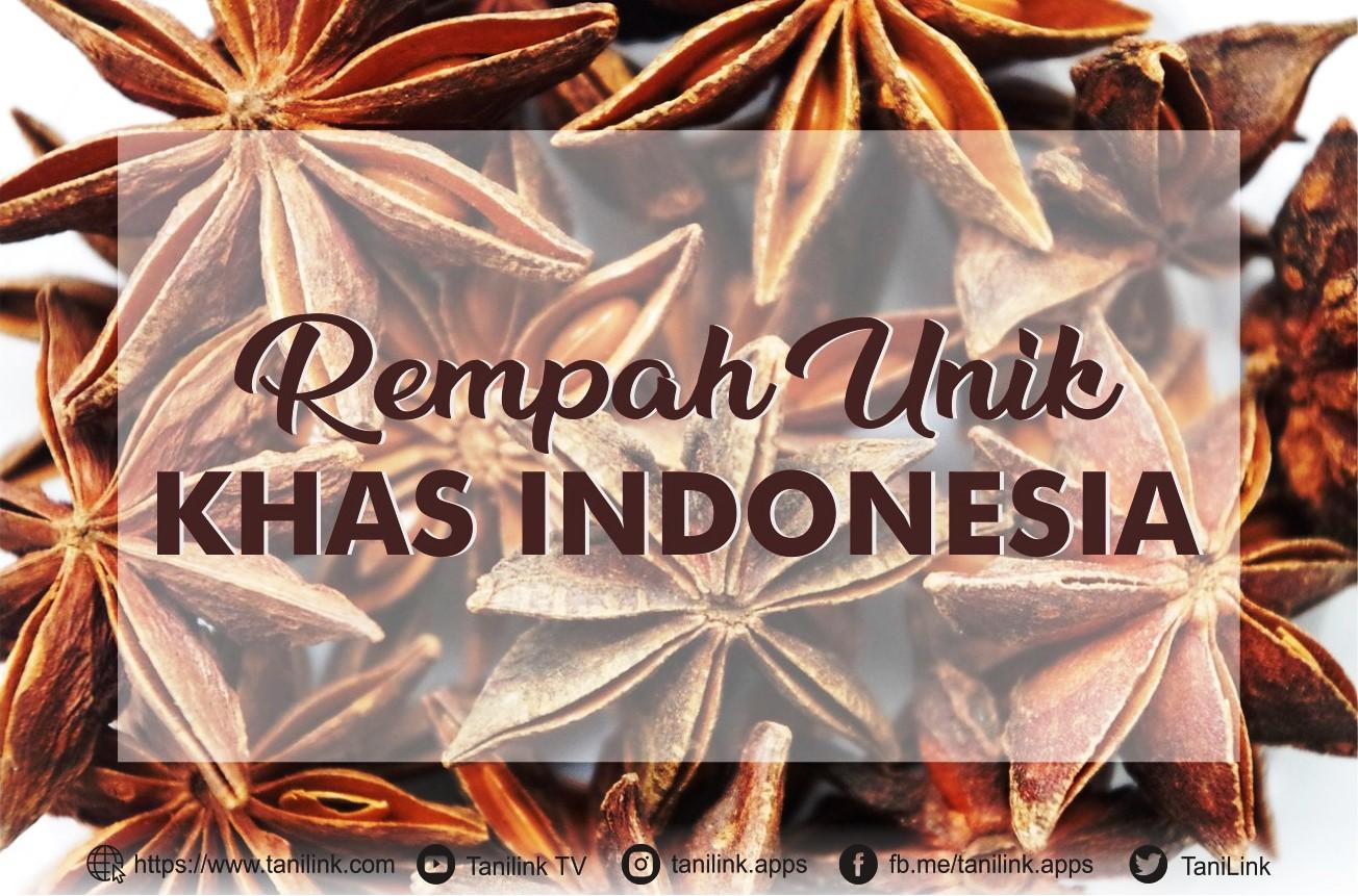 Rempah Unik Khas Indonesia yang Jarang Diketahui Namanya