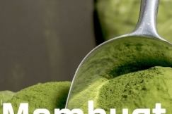 Tips Membuat Bubuk Daun Kelor (Moringa Oleifera)