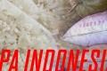 Kenapa Indonesia Impor Beras?